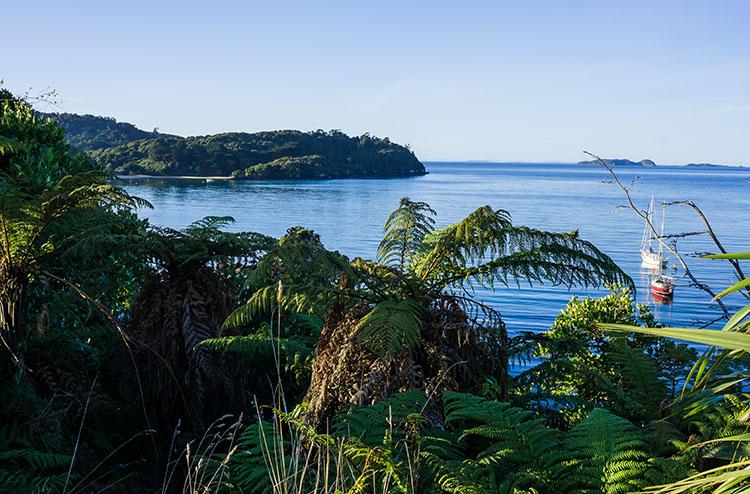 View at Church Hill, Stewart Island, New Zealand