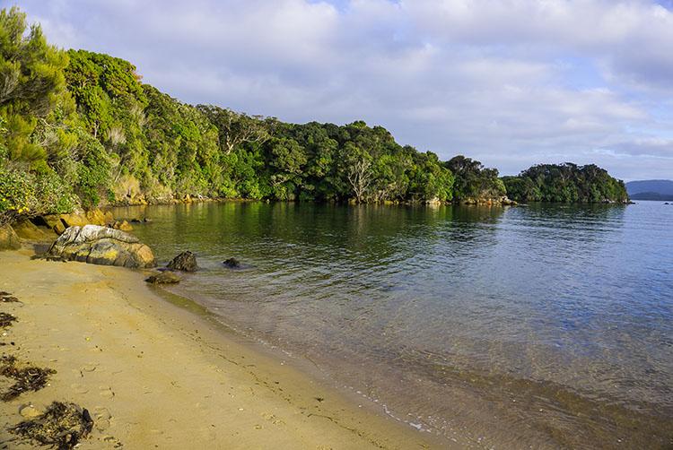Birds and Beaches: A Trip to Ulva Island