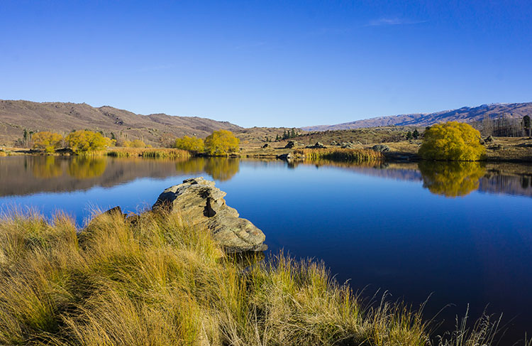 20 of the Best Things to Do in Central Otago